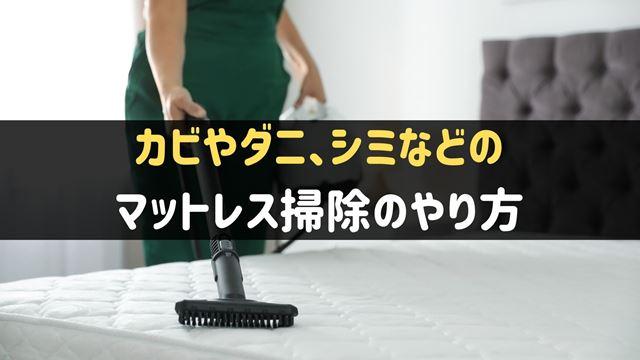 マットレスのカビ・ダニ・シミなどの掃除方法
