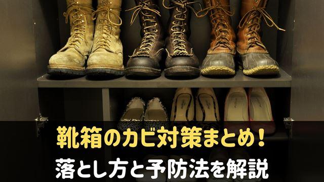靴箱のカビ対策