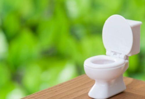 トイレのつまりの直し方まとめ