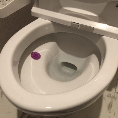 トイレ掃除 毎日 まとめ