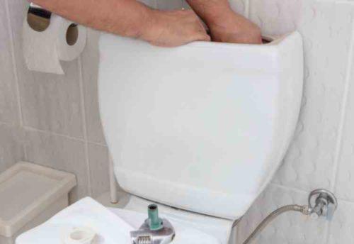 トイレ掃除のオプションを比べる