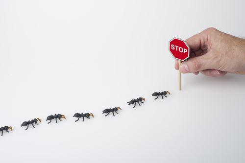 ゴキブリの侵入を防ぐ方法