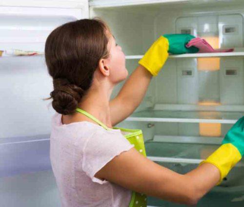 冷蔵庫の掃除の頻度