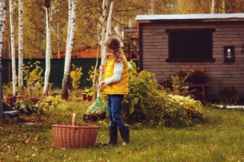 庭掃除業者のおすすめ3社