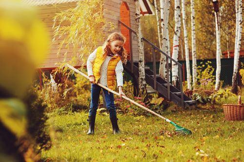 庭の掃除はどこに頼む?