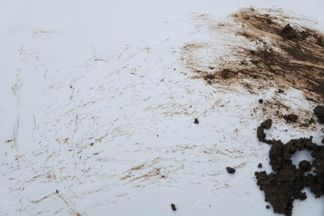 カーペットの泥汚れ