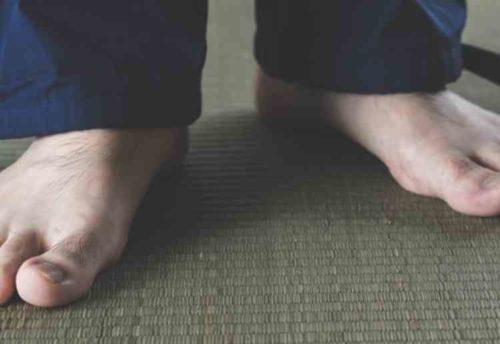 畳の上にカビのエサがある