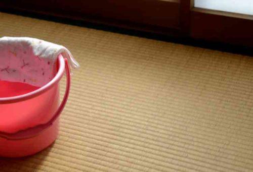 畳に水拭きする