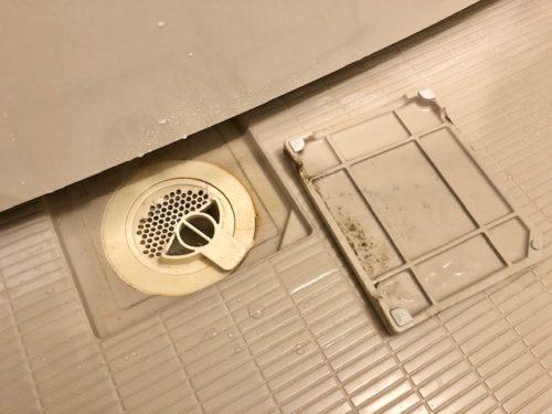 お風呂の排水口のカビ
