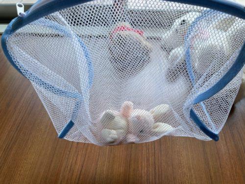 ぬいぐるみの干し方・乾燥方法