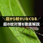 庭の蚊対策