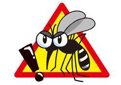 蚊は感染症を媒介し危険
