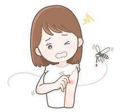 蚊の活動時期